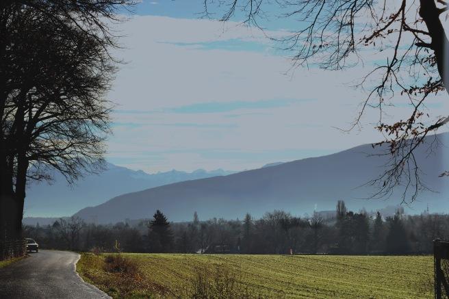Fields in Geneva