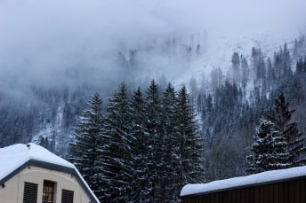 The fog rolling into the trees in on the mountains.